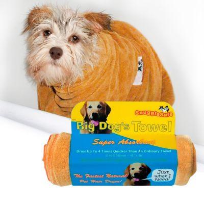 Ubranko dla psa – to tylko moda? Niekoniecznie!