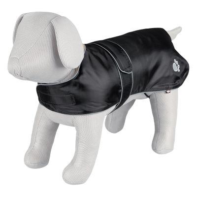 Jak dobrać ubranko dla psa?